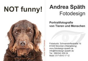 Hund Not Funny_andrea spaeth Fotodesign